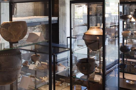 Musée de la céramique Terra Rossa à Salernes : exposition salle paléontologique