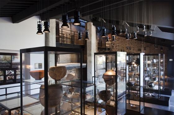 Musée Terra Rossa à Salernes : exposition paléontologie