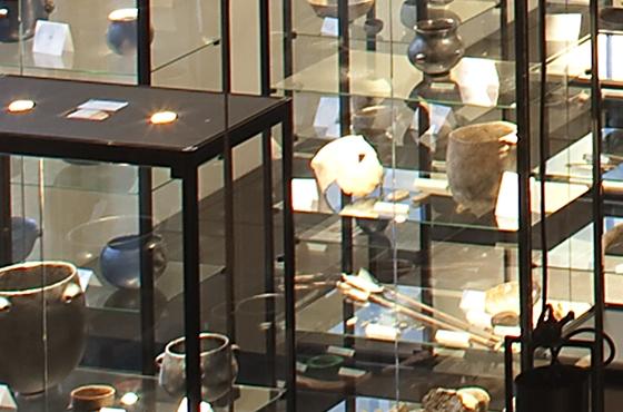 Musée de la céramique Terra Rossa à Salernes : exposition, salle paléontologique